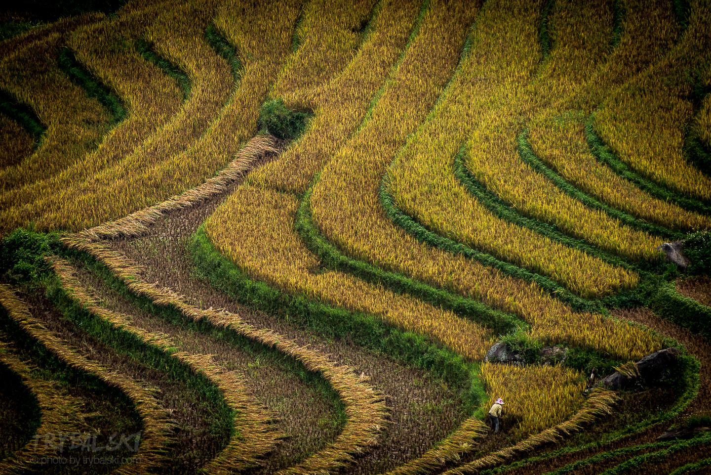 Krajobrazy rolnicze w czasie trekkingu