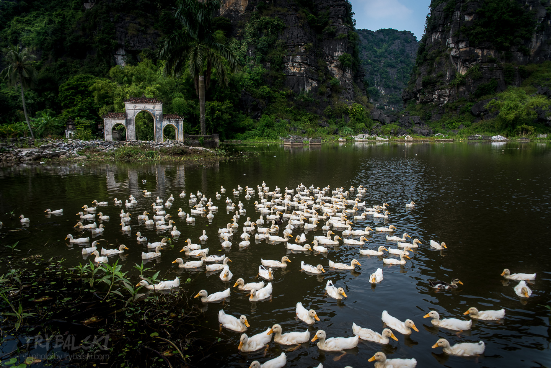 Wietnam_atrakcje_PTR9792