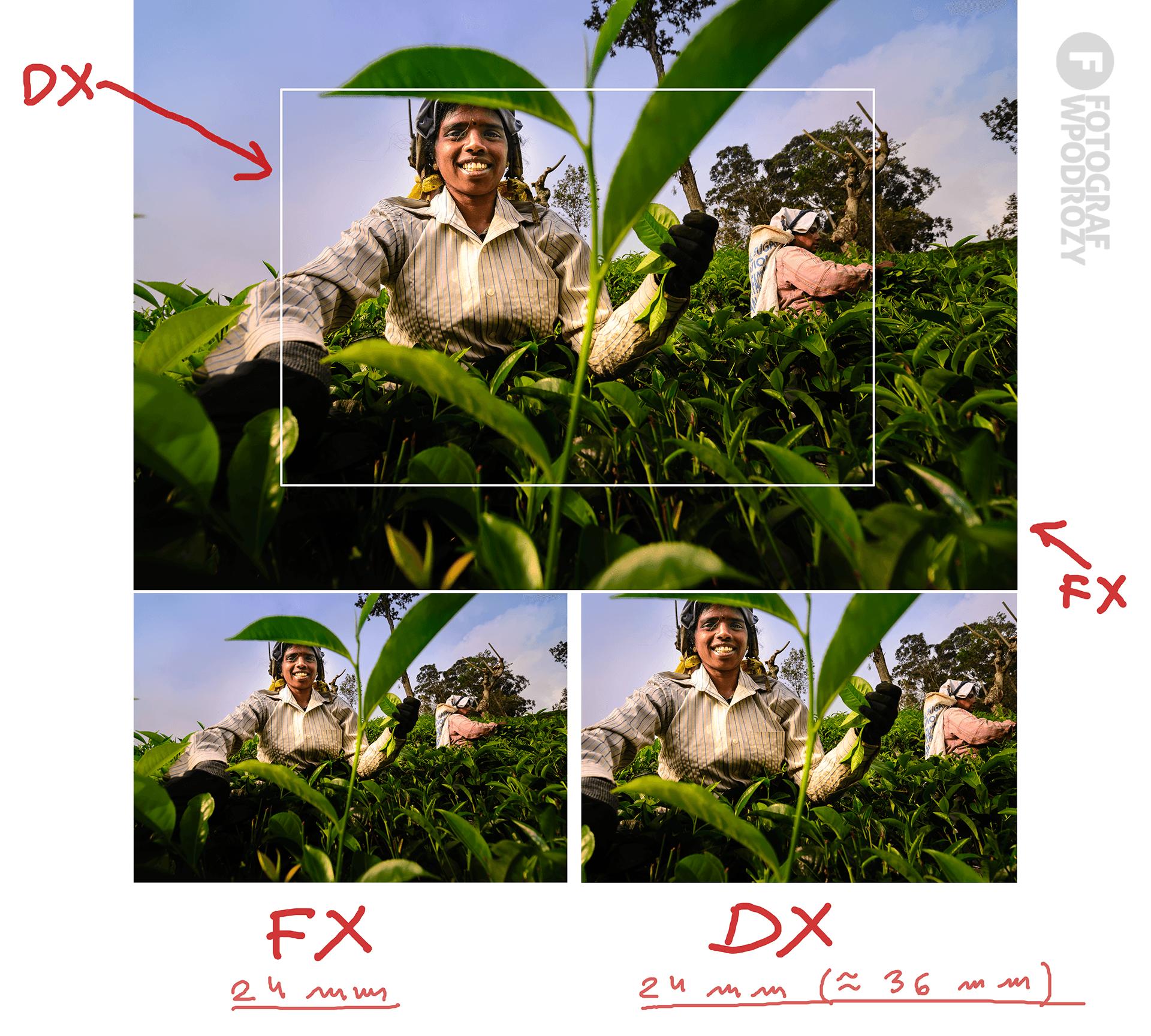 FX-DX-wielkosc-matrycy