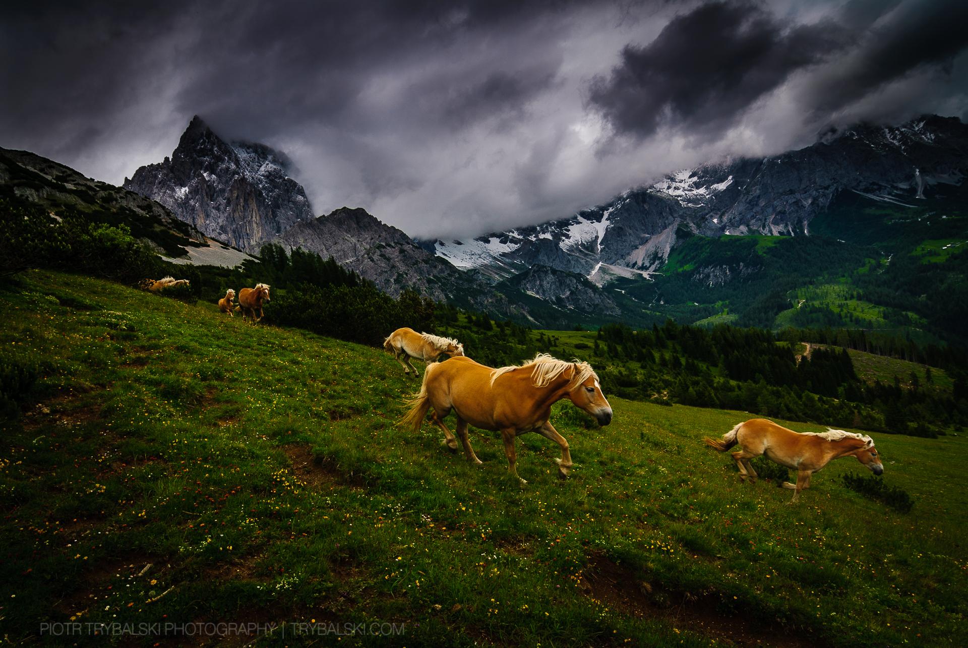 Austria Fotograf w podróży