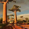 Pokaz nr 3_Madagaskar_1